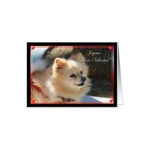 Joueuse Saint Valentin Pomeranian Card Health & Personal