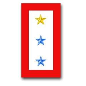 United States Army  One Gold Star and Two Blue Stars  Service