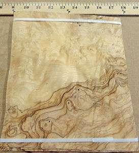 Olive Ash Burl wood veneer 8 x 8 with no backing (raw veneer)