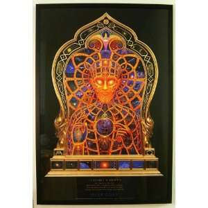 Cosmic Christ By Alex Grey Framed & Dry Mounted Display