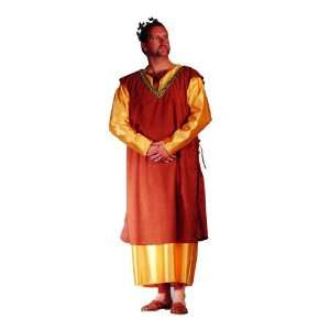 Adult Medieval King Costume Plus Size (42 50): Everything