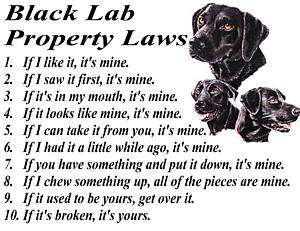 PARCHMENT PRINT  BLACK LAB LABRADOR RETRIEVER DOG LAW