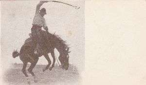 Cowboy on Bucking Bronco rodeo old 1900s Chinook MT postcard