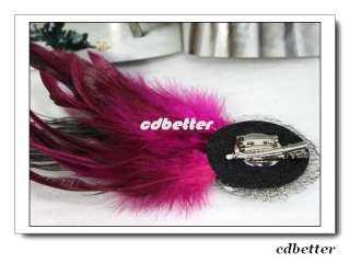 Lady Color Rhinestone Peacock Feather Fuschia Brooch Pins Hair Clips