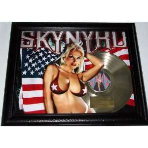 Skynyrd Freebird Gold Record Display non RIAA LP cd