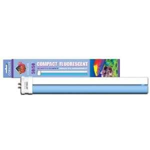 13 50/50 28W Square Pin Coralife Compact Fluorescent