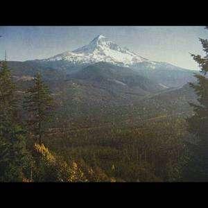 Union Pacific Railroad Poster Print Mt. Hood Oregon