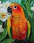 sun conure l e# 6 50 giclee of painting small