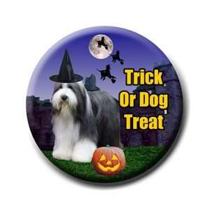 Bearded Collie Halloween Pin Badge Button