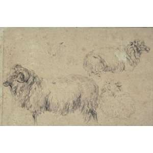 Nicolaes Berchem   32 x 20 inches   Studies of rams, goats and sheep