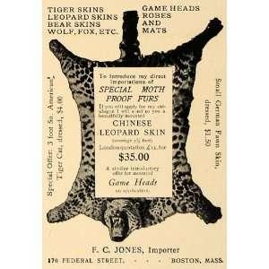 Ad F C Jones Importer Tiger Leopard Bear Wolf Fox   Original Print Ad