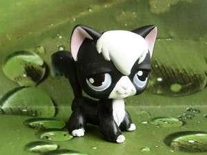 LITTLEST PET SHOP BLACK/WHITE KITTY CAT #55 NEW