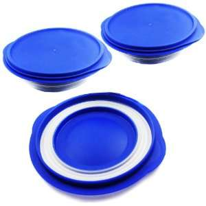 Diet Ian Silicone Pet Expandable/Collapsible Travel Bowl with Lid