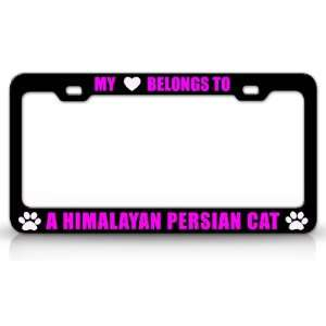 MY HEART BELONGS TO A HIMALAYAN PERSIAN Cat Pet Auto License Plate