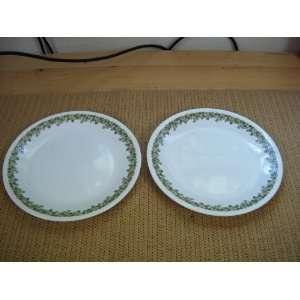 VINTAGE Corelle SPRING BLOSSOM Green 8 1/2 Diameter Plates(SET OF 2)