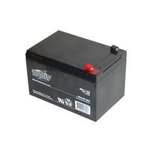 12 Volt Battery for Electric Mobility Scooter   A14401
