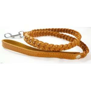 Braided Dog Leash 4 Ft Long 3/4 Wide Light Brown Pet Supplies